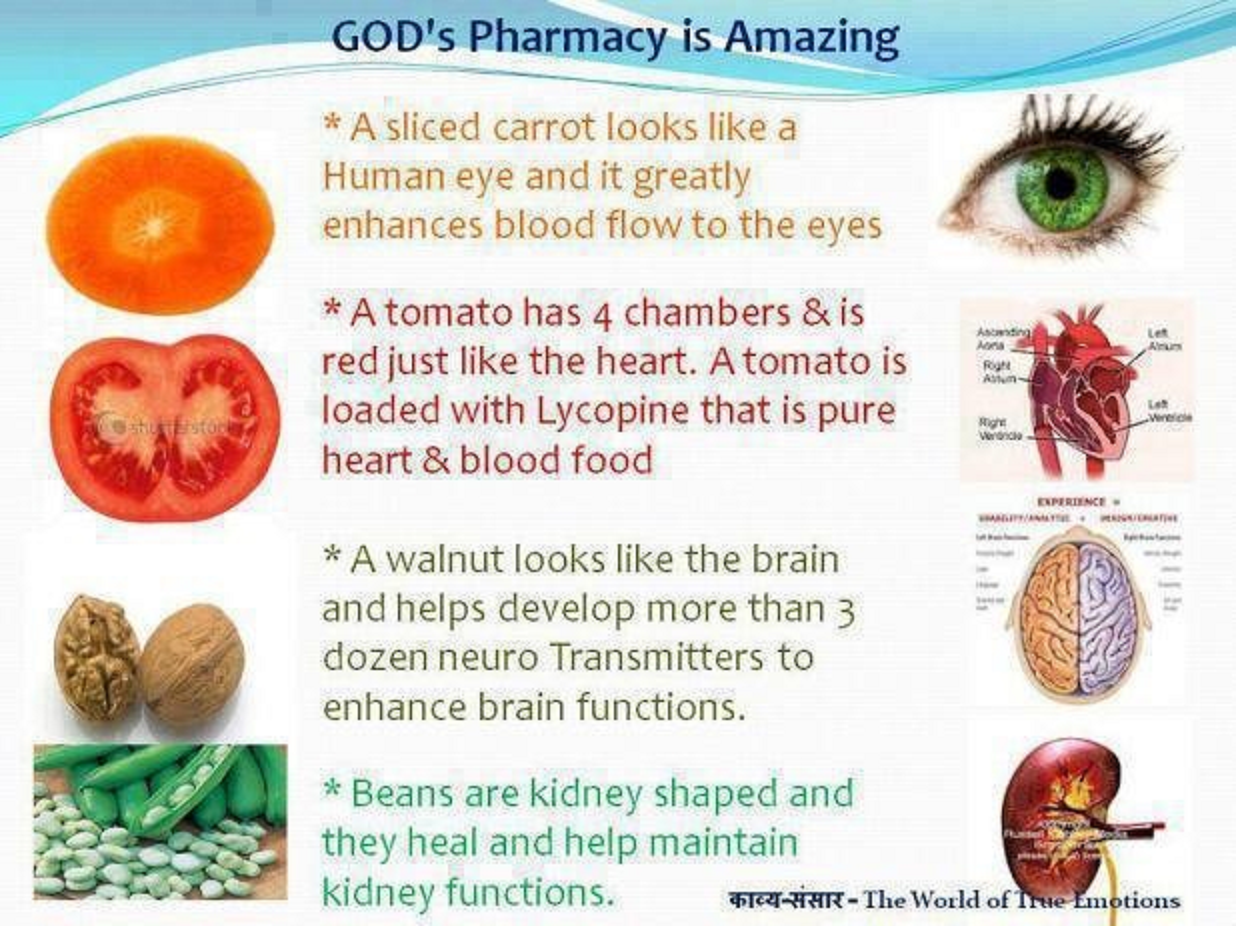 God S Pharmacy Snippets N Wit